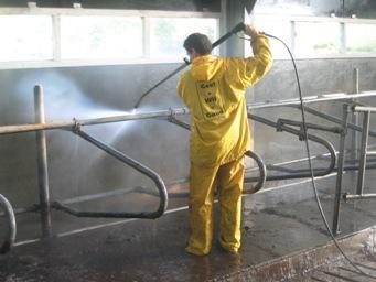 Stallen schoonspuiten door CSD